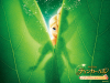 Tinkerbell_wp_1_800x600