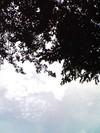 Sky_sky