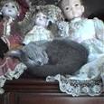 人形の膝枕