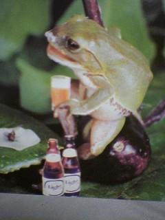 ビールが美味そうだ