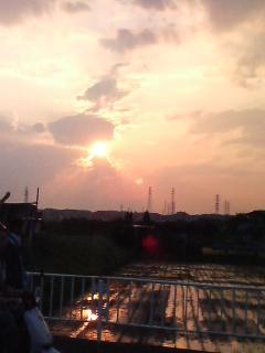 水田の夕ぐれ