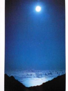 月下の泉♪
