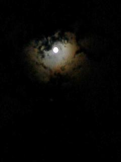 月がキレイだよ