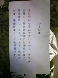 わさび菜〜美味いよ!