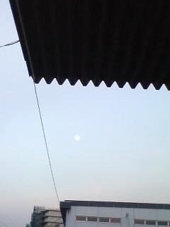 月がいる♪