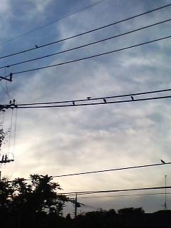雲が流れる…