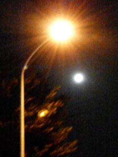 満月より街灯の方が…