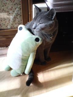 蛙とカリン