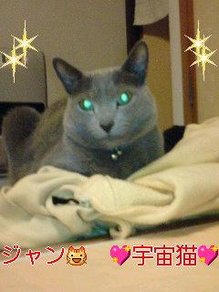 宇宙猫に…変身♪