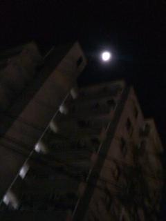 月が…出た!