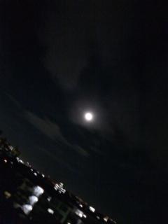夜空を見る