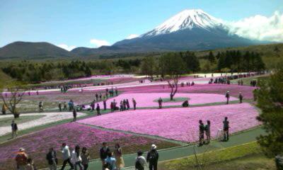 本栖湖〜富士山
